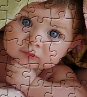 Jigsaw Puzzle Photo Effect 1