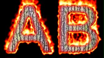 Burning Wood Text Logo Effect 32