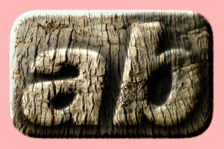 Embossed Wood Text Effect 057